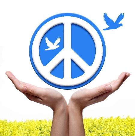 Barış ve Güvenlik: Küresel kamu malı olarak sunumu ve finansman mekanizmaları